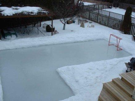david hale 39 s backyard rink howard 39 s corner of the web